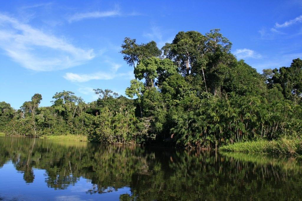 trek in equatorial jungle