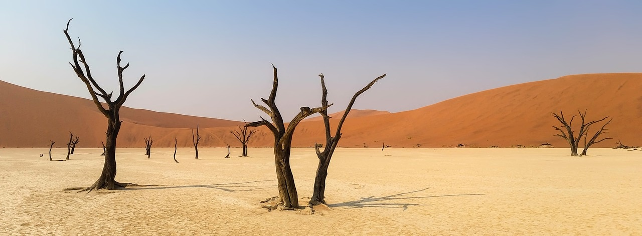 Marcher dans le désert namibien