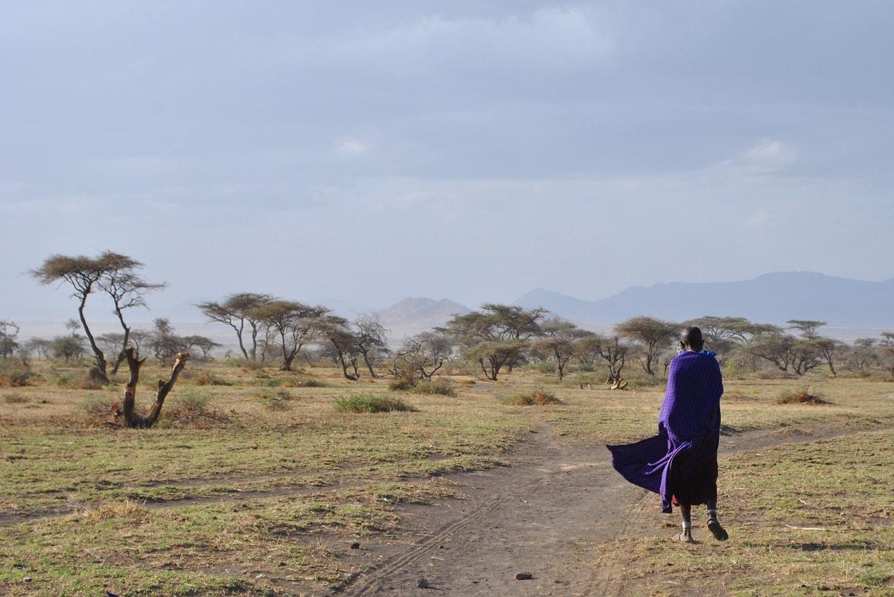 Massaï marchant dans les plaines du Serengeti