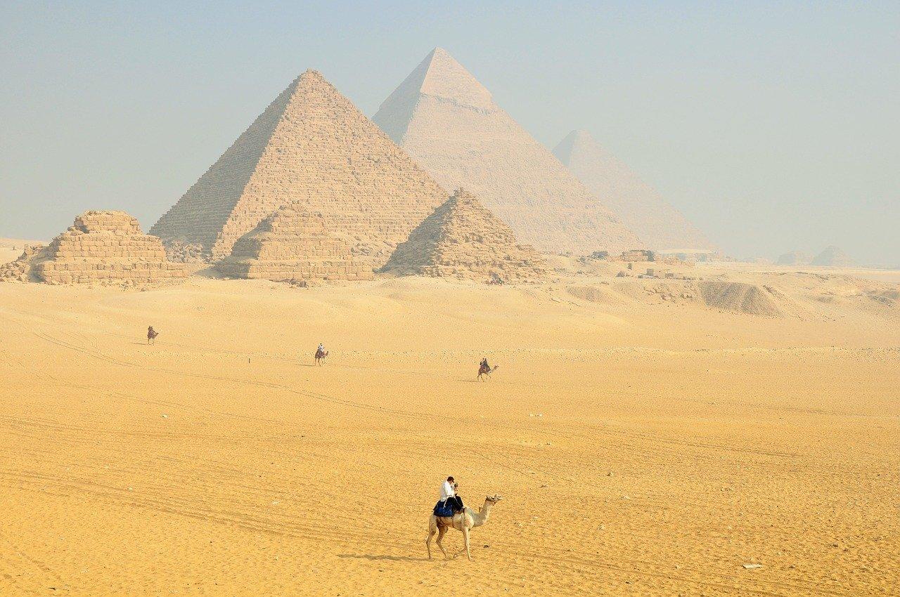 dromadaires marchant près des pyramides d'Egypte